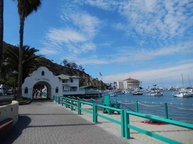 Catalina Island Student Trips